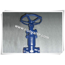 Power Station F22 Socket Weld Globe Valve (900lb-SW)
