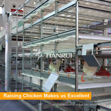 4 Tiers Automatic Manure Removing Battery Cages for Broilers
