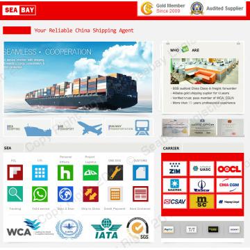 Guangzhou Shenzhen envío de servicio de expedidor