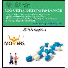 Source des plantes Acides aminés Capsule Bcaa