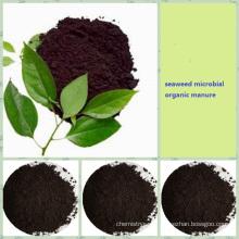 compuesto fertilizante de ácido algínico bioorgánico NPK