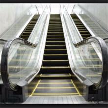 Escalera mecánica interior al aire libre del paso comercial de la barandilla de Auto Start