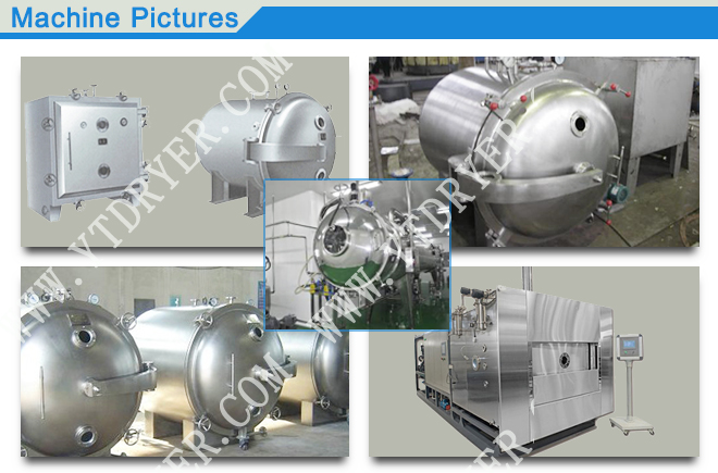Sterile Single-arm Conical Vacuum Dryer