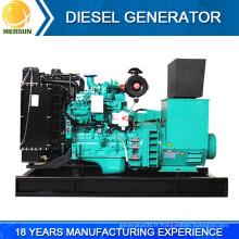 Alimentation professionnelle carburant moins de puissance génératrice diesel 30kw à vendre
