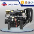 Motor marinho diesel do motor 495CD