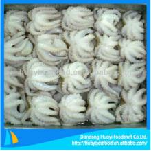 Marisco congelado superior congelado do polvo do bebê para a venda