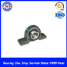 New Products and Top Level Pillow Block Bearing (UCP 205)