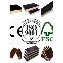 Black /Brown Film Faced Plywood /Marine Plywood Poplar Core