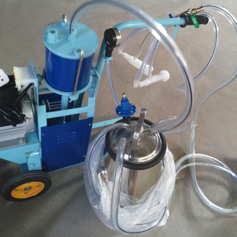 piston type milking machine