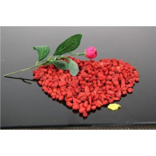 Pérdida de peso tradicional china Beji Berry secada a la comida