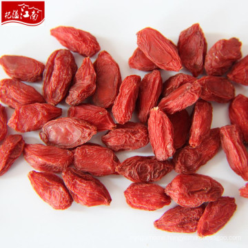 Distributor price of dried fruits goji in bulk