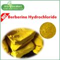 Berberine hydrochloride 97% herb extract