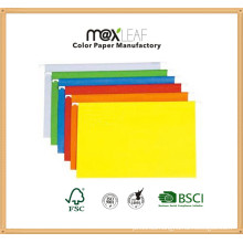 A4 230GSM Color Suspensin File Folder