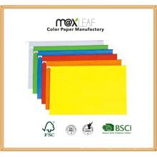 A4 230GSM Color Suspensin File Folder