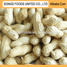 peanut importer