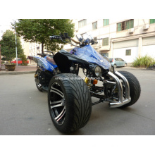 Hot New 3 Wheel 250cc ATV Quad (Wv-ATV-031) with Sun F Tires