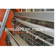 Machine d'alimentation automatique pour le poulet