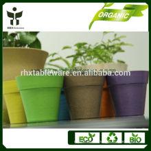 biodegradable garden pots decorations
