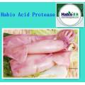 Acide protéase protéique pour calmer le calmar