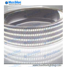 240LEDs / M SMD3014 Tira de LED 1200LEDs 12 / 24VDC Tira de luz LED