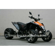 250cc ЕЭС ATV