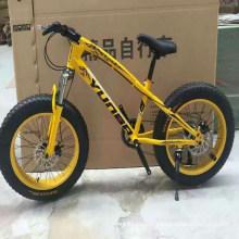 "20"" Mountain Bikes for Children Travel (LY-C-0611)"