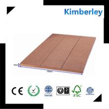 Anti-Corrosión Ecológica WPC Decking, madera de plástico compuesto de pared