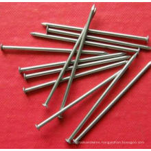 Common Sizes Iron Wire Nail Factory