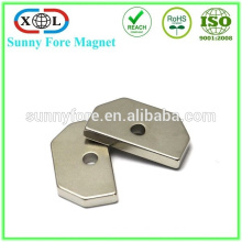 high quality customized stong neodymium magnet sectored