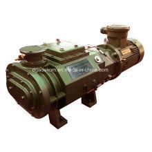 Tipo horizontal Bomba de vacío de tornillo seco refrigerado por agua (DSHS-150)