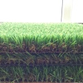 Fake Grass For Landscaping
