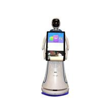 1 Year Warranty Service Reception Robot