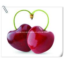 Manufacturer Natural Cherry/Prunus Pseudocerasus Extract Powder