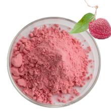 Manufactory Supply Litchi Fruit Powder Litchi Juice Extract Powder