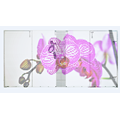 LED Display Screen P10.42 Transparent