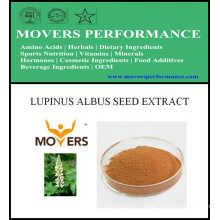 Hot Slaes Ingrédient cosmétique: extrait de semence Lupinus Albus
