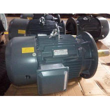 6 / 8 Pole 18.5KW / 22KW High Temperature Electric Motors 1