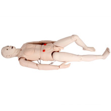 Multifunctional Nursing Skill Training Human Medical Simulator Model