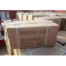 Best Quality for Roofing Nails Best Galvanized Twist Shank Roofing Nail export to Marshall Islands Supplier