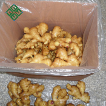 2018 chinese ginger price per ton