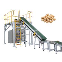 Automatic Chickpeas Secondary Packaging Machine