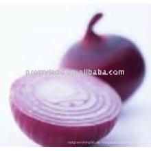 Chinesische rote Zwiebel