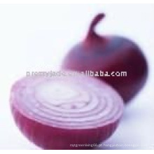 Cebola vermelha chinesa