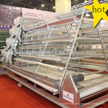 Design hot galvanized chicken breeding cage with automatic drinking system