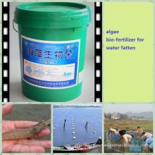 Fertilizante de agua de algas para la acuicultura