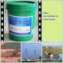 seaweed fatten water fertilizer for aquaculture