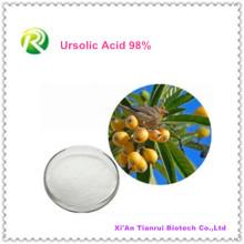 100% Folium Eriobotryae Extract Ácido Ursólico 98%