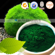 Halal Organic Kosher Marked Pure Powder Chlorella Powder