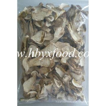 Hochwertiger getrockneter Pilz Boletus