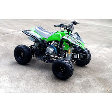Alta qualidade 110cc Quad Bike para venda (JY-100-1A)